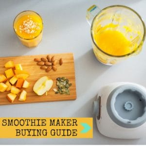 smoothie maker buying guide
