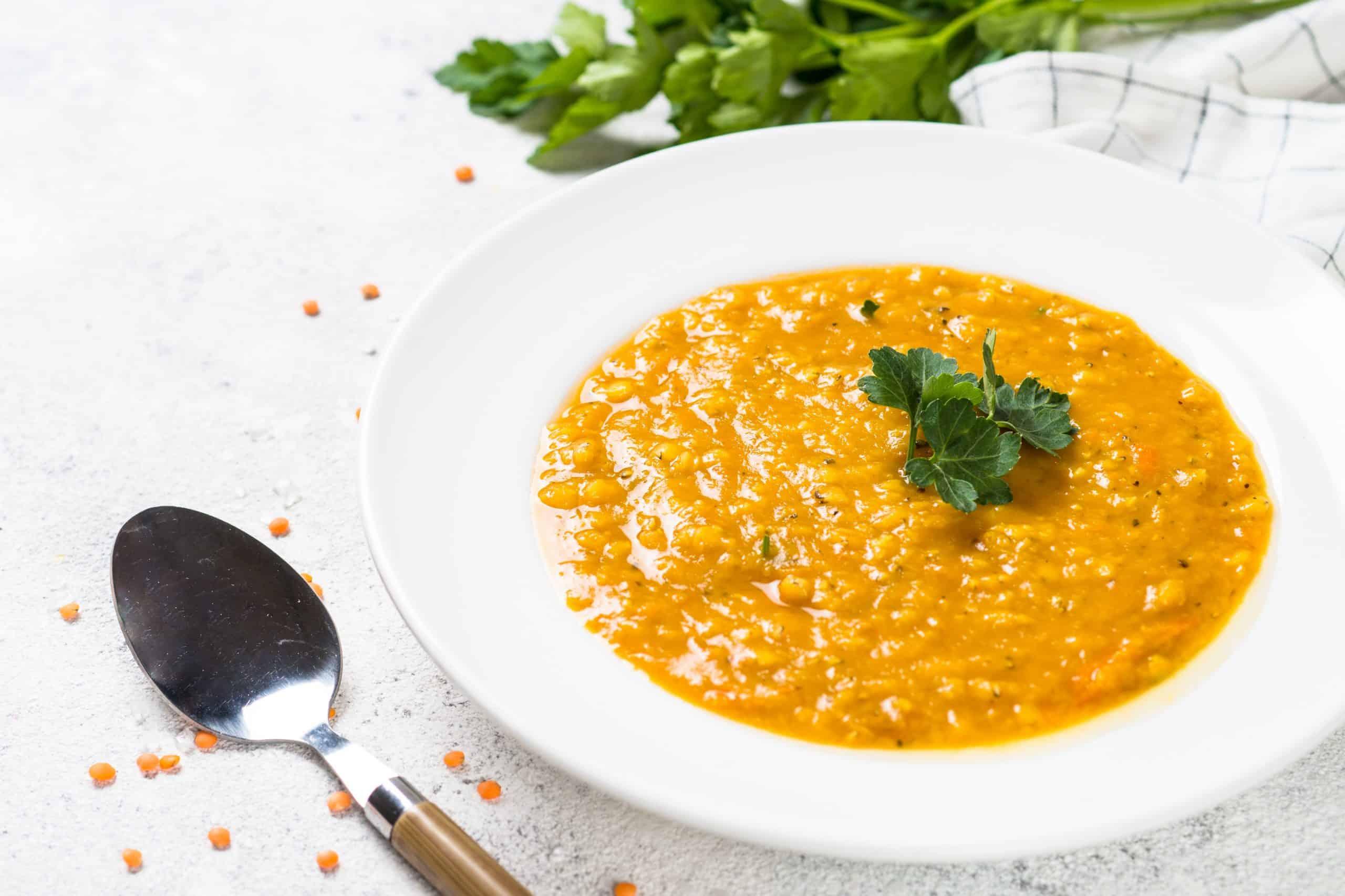 red lentil soup