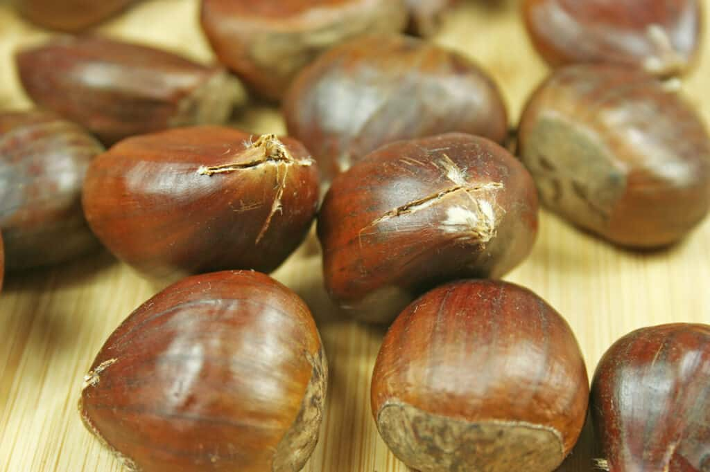 Chestnuts with tops cut