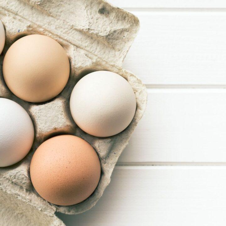 different eggs in egg carton