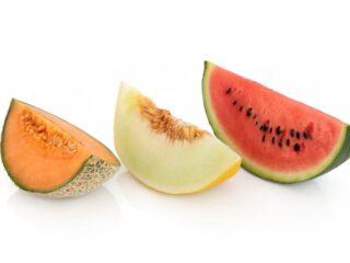 Types of melon