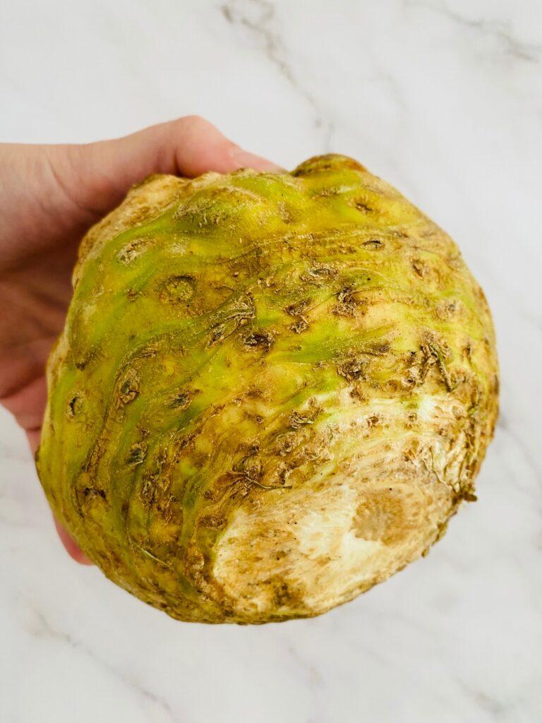 celeriac root in hand